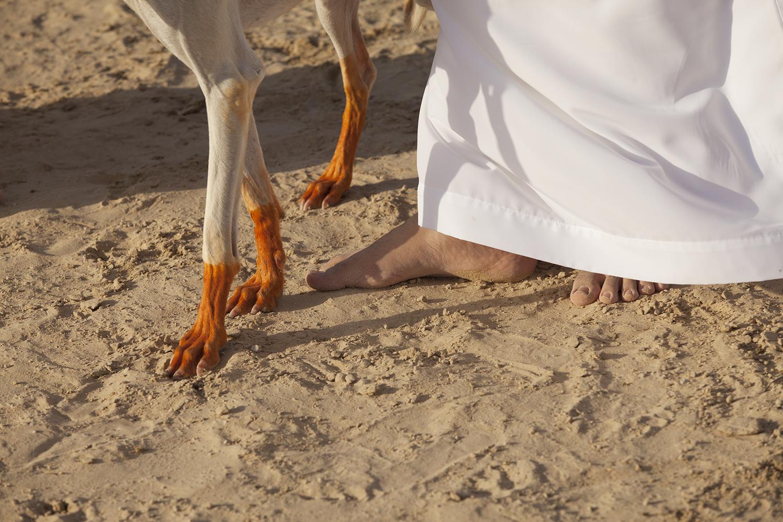 abu_dhabi_085